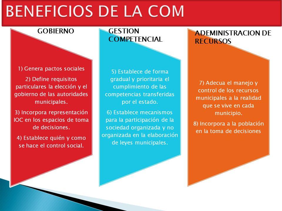 GOBIERNOGESTION COMPETENCIAL ADEMINISTRACION DE RECURSOS
