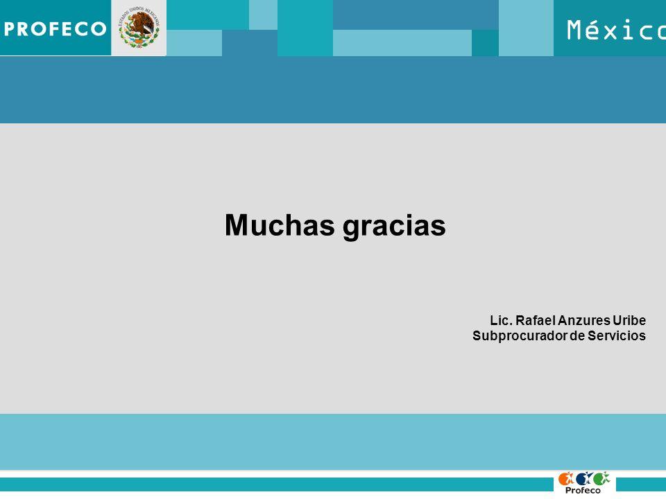 México Muchas gracias Lic. Rafael Anzures Uribe Subprocurador de Servicios