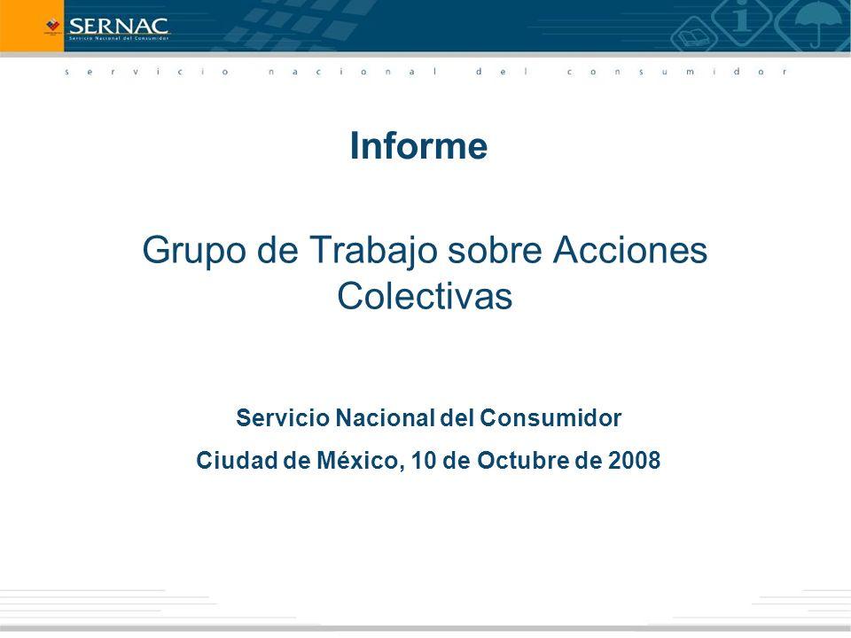 Grupo de Trabajo sobre Acciones Colectivas Servicio Nacional del Consumidor Ciudad de México, 10 de Octubre de 2008 Informe