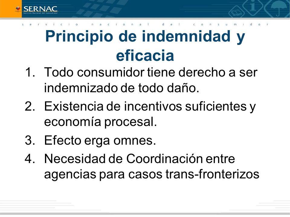 Principio de indemnidad y eficacia 1.Todo consumidor tiene derecho a ser indemnizado de todo daño.