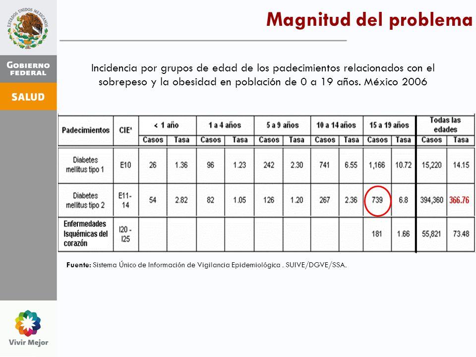 Incidencia por grupos de edad de los padecimientos relacionados con el sobrepeso y la obesidad en población de 0 a 19 años. México 2006 Fuente: Sistem