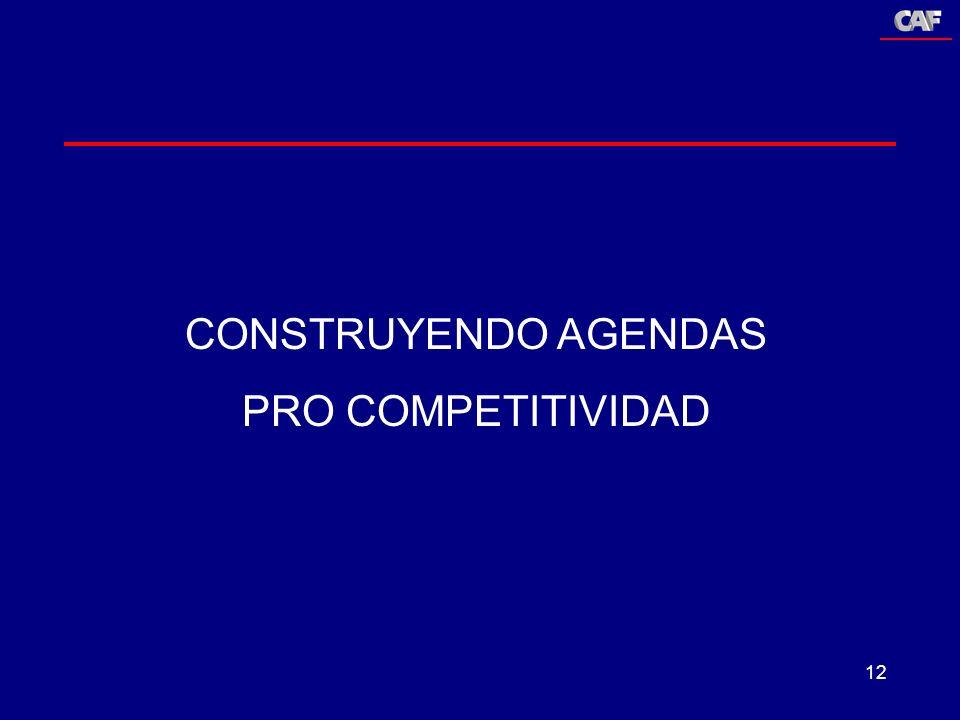12 CONSTRUYENDO AGENDAS PRO COMPETITIVIDAD
