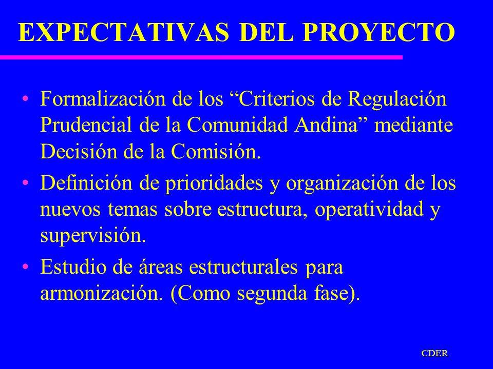 CDER APORTES AL PROCESO TEMAS DE ANALISIS SOBRE ASPECTOS ESTRUCTURALES Y OPERATIVOS PARA LA CONFORMACION DE UN SISTEMA FINANCIERO ANDINO.