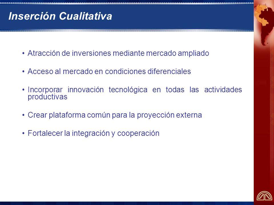 Inserción Cualitativa Atracción de inversiones mediante mercado ampliado Acceso al mercado en condiciones diferenciales Incorporar innovación tecnológica en todas las actividades productivas Crear plataforma común para la proyección externa Fortalecer la integración y cooperación