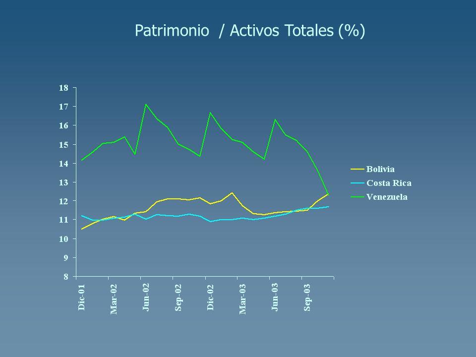 Patrimonio / Activos Totales (%)