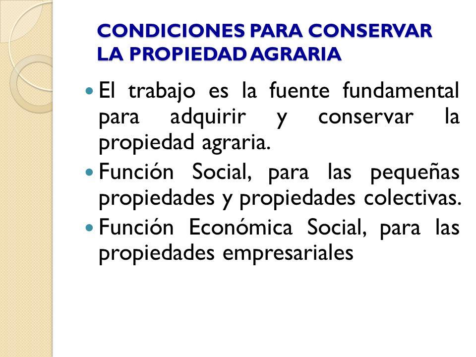 CONDICIONES PARA CONSERVAR LA PROPIEDAD AGRARIA El trabajo es la fuente fundamental para adquirir y conservar la propiedad agraria. Función Social, pa