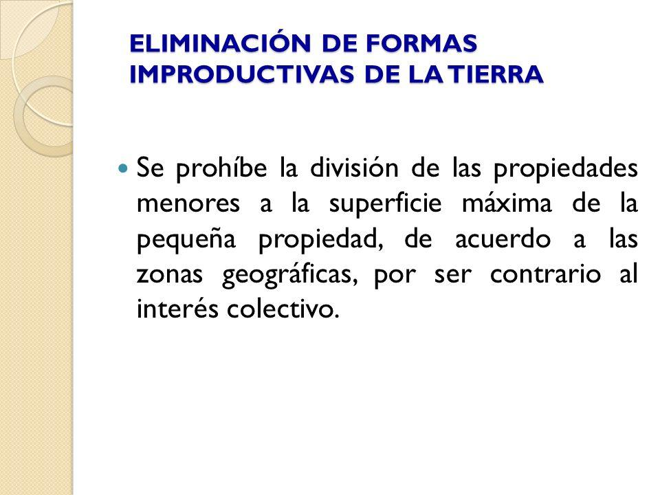 ELIMINACIÓN DE FORMAS IMPRODUCTIVAS DE LA TIERRA Se prohíbe la división de las propiedades menores a la superficie máxima de la pequeña propiedad, de
