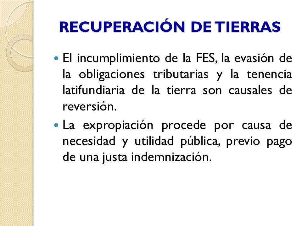 RECUPERACIÓN DE TIERRAS El incumplimiento de la FES, la evasión de la obligaciones tributarias y la tenencia latifundiaria de la tierra son causales d