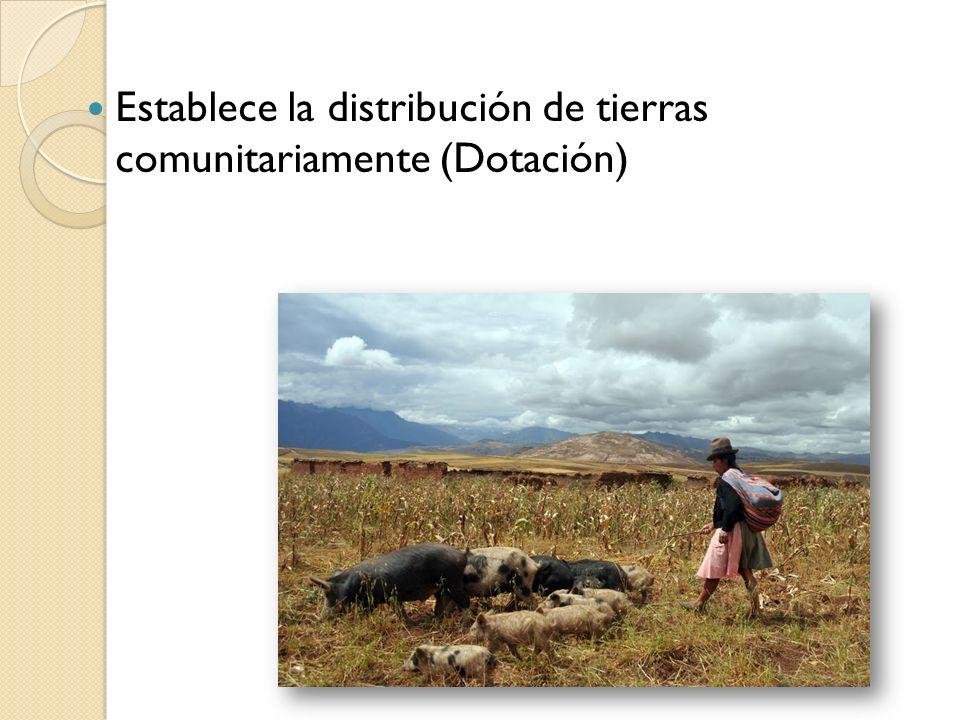 TEMAS EN LA CONSTITUCION POLITICA DE ESTADO Las tierras fiscales serán dotadas a indígenas, originarios, campesinos que no tengan tierra o posean de manera insuficiente.
