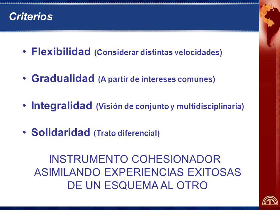 Criterios Flexibilidad (Considerar distintas velocidades) Gradualidad (A partir de intereses comunes) Integralidad (Visión de conjunto y multidisciplinaria) Solidaridad (Trato diferencial) INSTRUMENTO COHESIONADOR ASIMILANDO EXPERIENCIAS EXITOSAS DE UN ESQUEMA AL OTRO