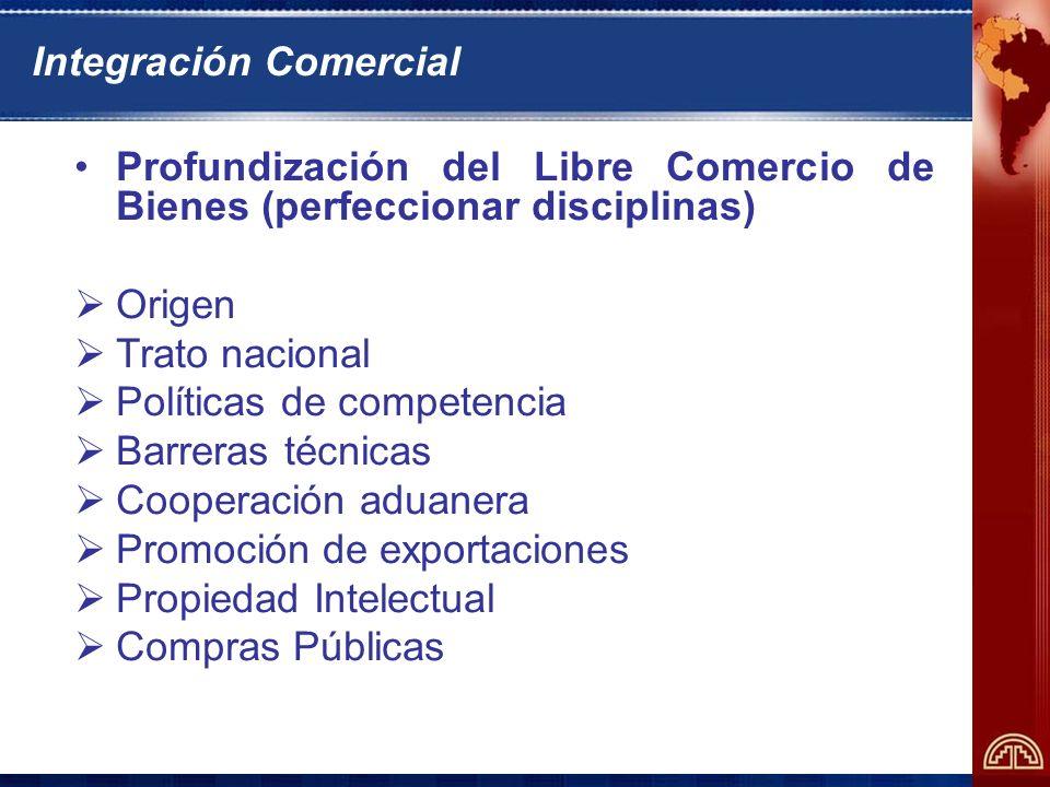 Integración Comercial Libre comercio de servicios Transportes Telecomunicaciones Financieros Profesionales Turismo
