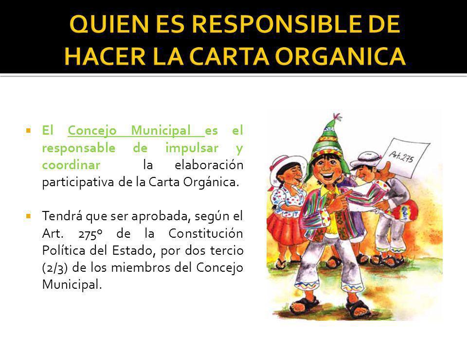 El Concejo Municipal es el responsable de impulsar y coordinar la elaboración participativa de la Carta Orgánica. Tendrá que ser aprobada, según el Ar