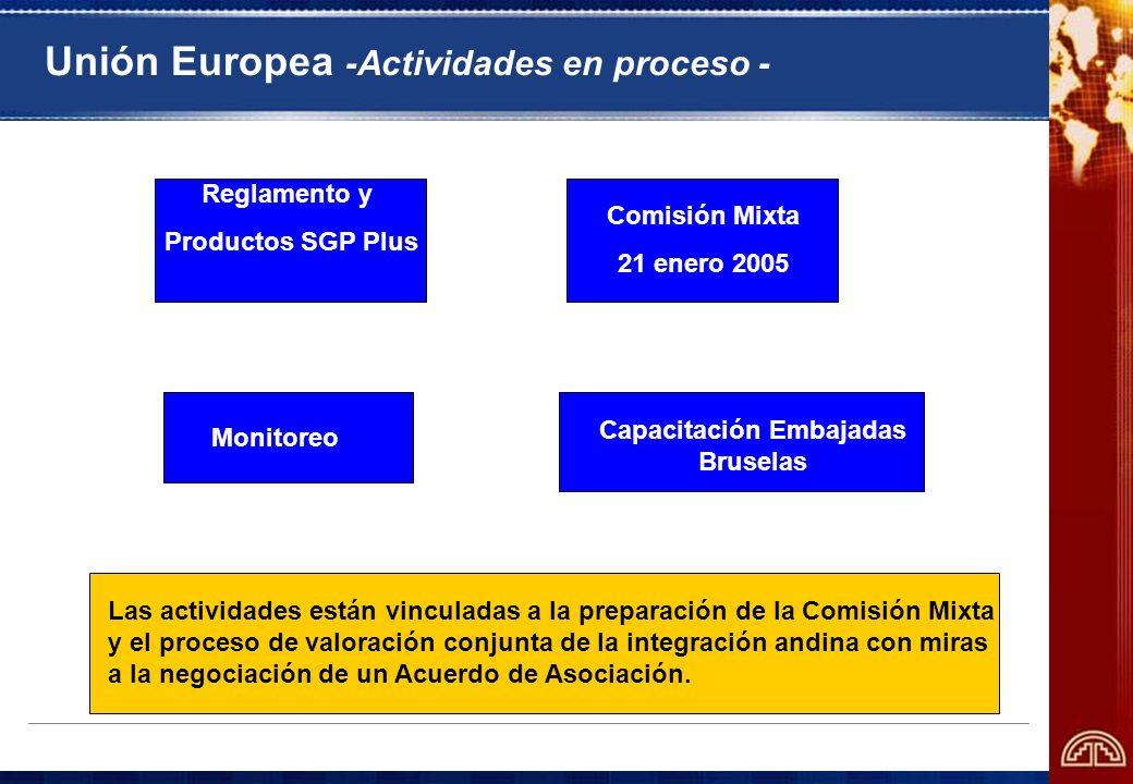 Unión Europea -Actividades en proceso - Análisis jurídico Panel SGP- Droga Comisión Mixta 21 enero 2005 Capacitación Embajadas Bruselas Monitoreo Las
