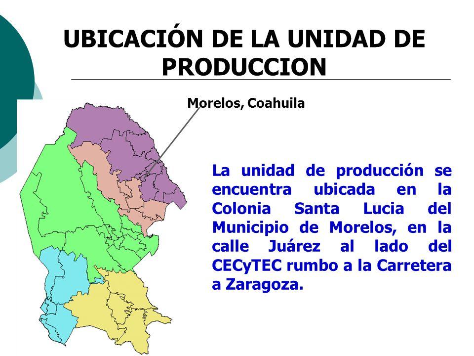 La unidad de producción se encuentra ubicada en la Colonia Santa Lucia del Municipio de Morelos, en la calle Juárez al lado del CECyTEC rumbo a la Car