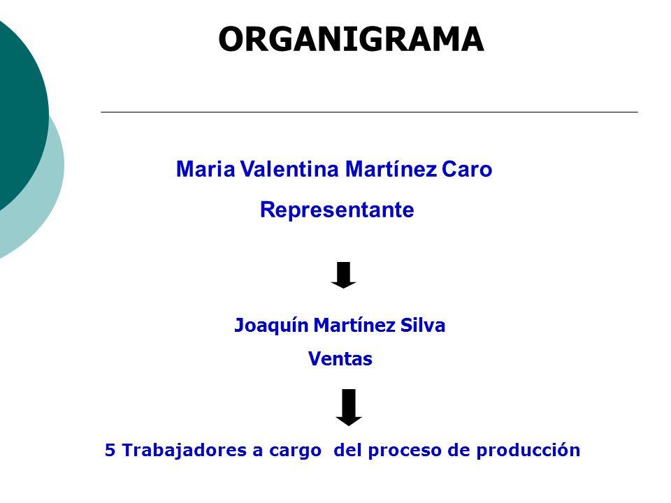 ORGANIGRAMA Joaquín Martínez Silva Ventas 5 Trabajadores a cargo del proceso de producción Maria Valentina Martínez Caro Representante