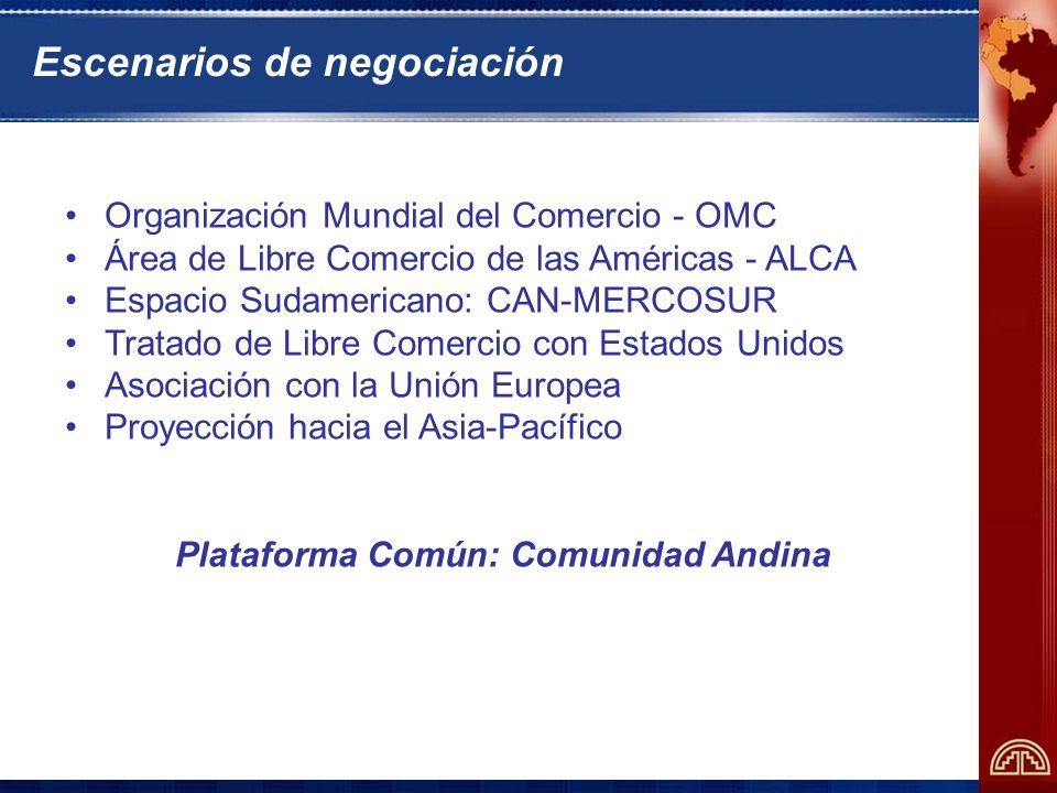 Objetivos del programa Propiciar una visión integral de la agendas de negociación de los países andinos en los distintos escenarios en marcha Fortalecer la capacidad de formulación de propuestas y de análisis de escenarios durante el proceso de negociación, estimulando la creación de sinergias entre los países andinos Sistematizar el apoyo de la Secretaría General de la Comunidad Andina a los países miembros en sus negociaciones internacionales extracomunitarias