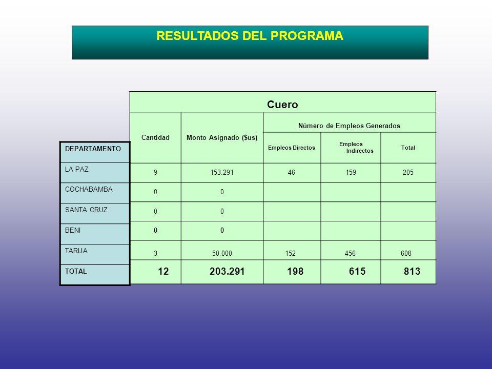 Cuero CantidadMonto Asignado ($us) Número de Empleos Generados Empleos Directos Empleos Indirectos Total 9153.29146159205 00 00 00 3 50.000 152 456 608 12 203.291 198 615 813 DEPARTAMENTO LA PAZ COCHABAMBA SANTA CRUZ BENI TARIJA TOTAL RESULTADOS DEL PROGRAMA