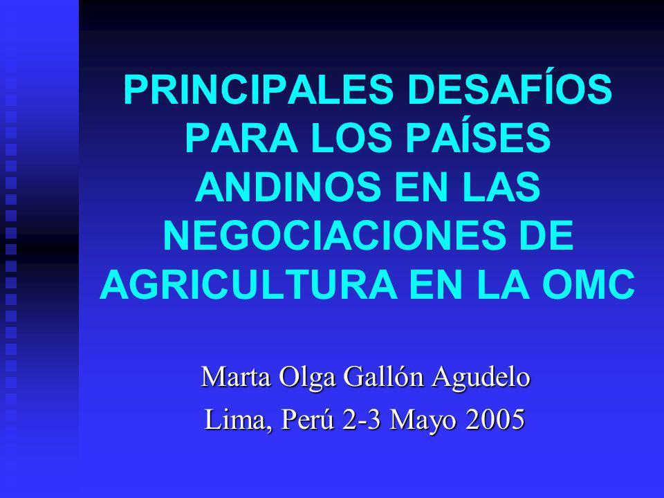 PRINCIPALES DESAFÍOS PARA LOS PAÍSES ANDINOS EN LAS NEGOCIACIONES DE AGRICULTURA EN LA OMC Marta Olga Gallón Agudelo Lima, Perú 2-3 Mayo 2005