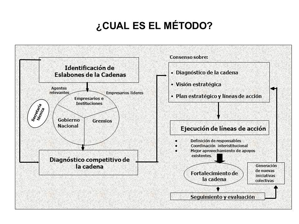 Empresarios líderes Identificación de Eslabones de la Cadenas Definición de responsables Coordinacióninteristitucional Mejor aprovechamiento de apoyos