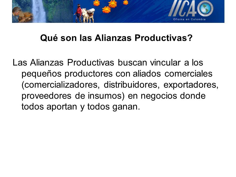 Qué son las Alianzas Productivas? Las Alianzas Productivas buscan vincular a los pequeños productores con aliados comerciales (comercializadores, dist