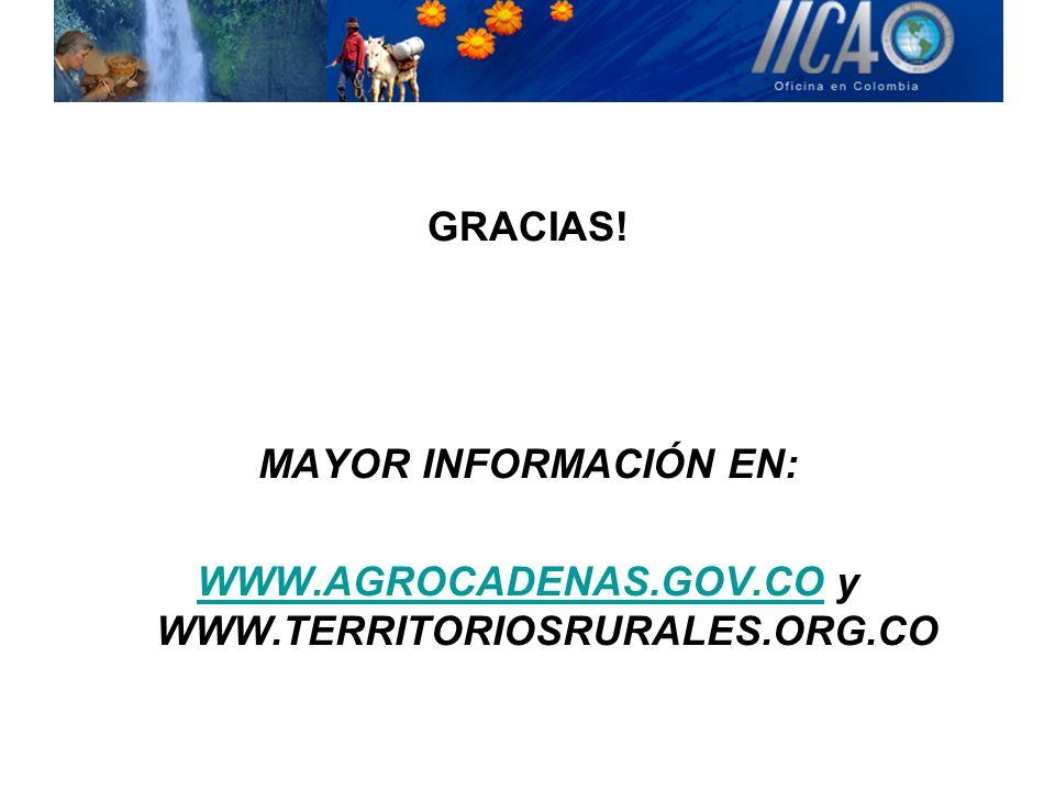 GRACIAS! MAYOR INFORMACIÓN EN: WWW.AGROCADENAS.GOV.COWWW.AGROCADENAS.GOV.CO y WWW.TERRITORIOSRURALES.ORG.CO