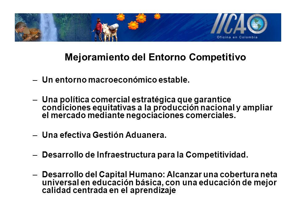Mejoramiento del Entorno Competitivo –Un entorno macroeconómico estable. –Una política comercial estratégica que garantice condiciones equitativas a l