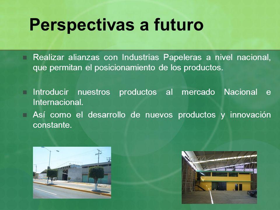 Perspectivas a futuro Realizar alianzas con Industrias Papeleras a nivel nacional, que permitan el posicionamiento de los productos. Introducir nuestr