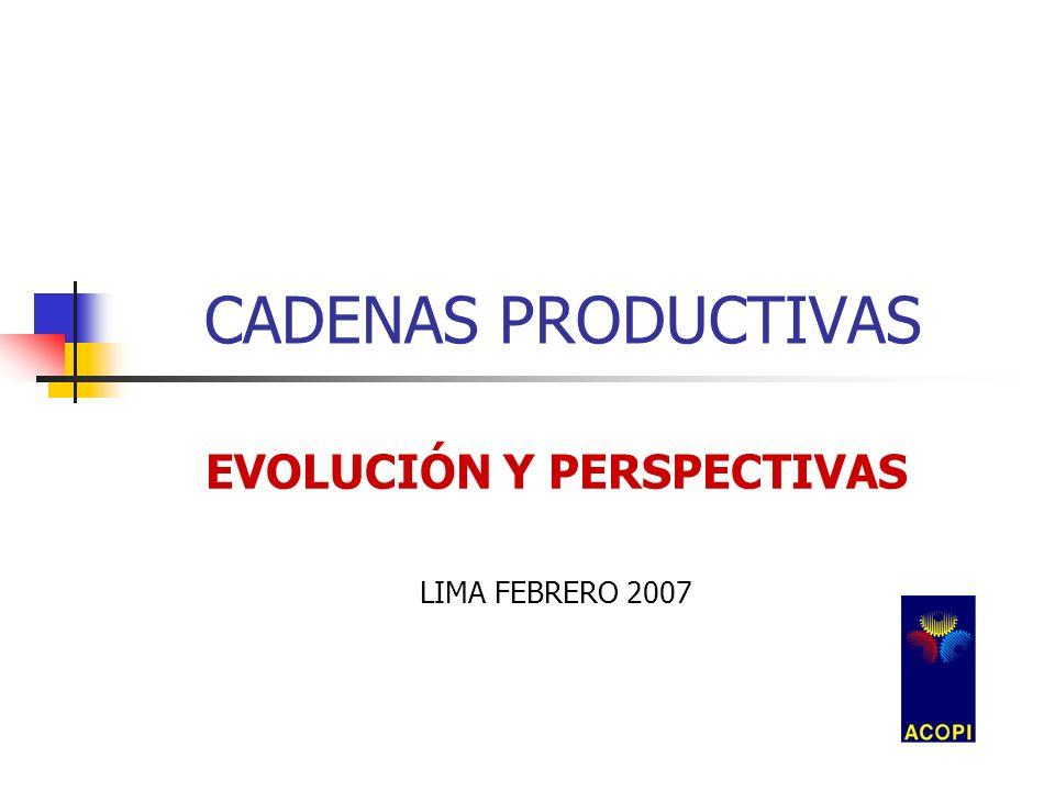 CADENAS PRODUCTIVAS EVOLUCIÓN Y PERSPECTIVAS LIMA FEBRERO 2007