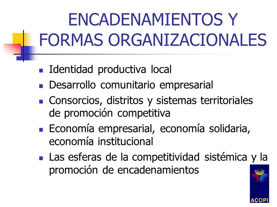 ENCADENAMIENTOS Y FORMAS ORGANIZACIONALES Desarrollo Individual Empresarial Inserción Individual en mercados Asociatividad y acceso a factores Asociatividad y acceso a mercados Contratación consorcial internacional La filiera: encadenando asociatividades