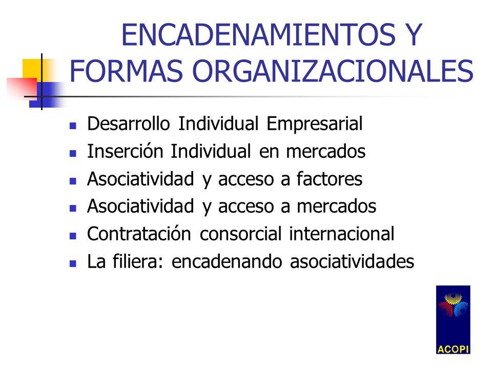 ENCADENAMIENTOS Y FORMAS ORGANIZACIONALES Desarrollo Individual Empresarial Inserción Individual en mercados Asociatividad y acceso a factores Asociat