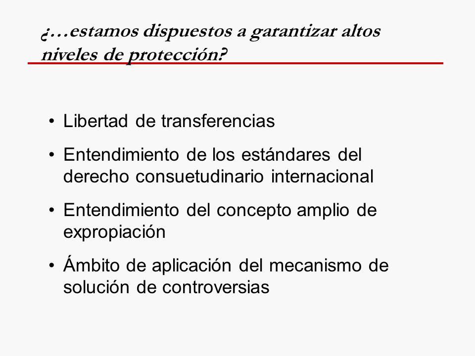 Libertad de transferencias Entendimiento de los estándares del derecho consuetudinario internacional Entendimiento del concepto amplio de expropiación Ámbito de aplicación del mecanismo de solución de controversias ¿…estamos dispuestos a garantizar altos niveles de protección