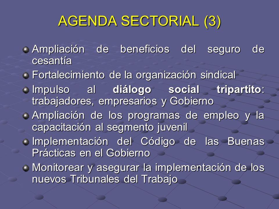 AGENDA SECTORIAL (3) Ampliación de beneficios del seguro de cesantía Fortalecimiento de la organización sindical Impulso al diálogo social tripartito: