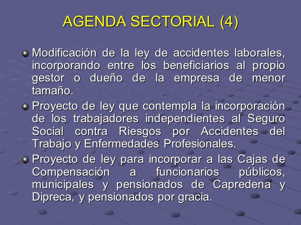 AGENDA SECTORIAL (4) Modificación de la ley de accidentes laborales, incorporando entre los beneficiarios al propio gestor o dueño de la empresa de menor tamaño.