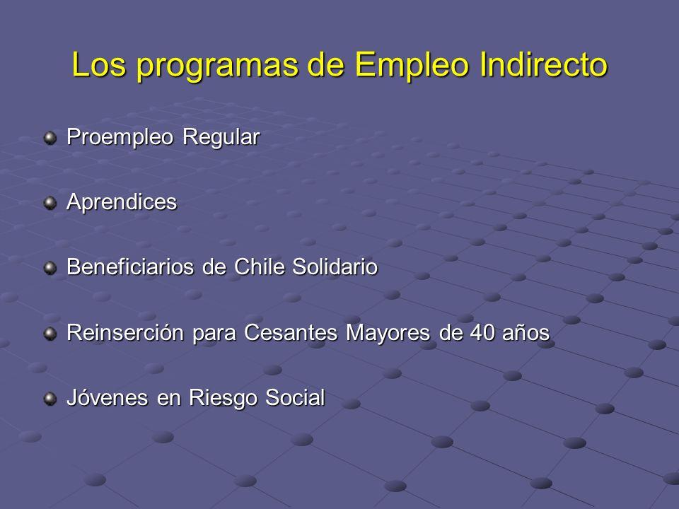 Los programas de Empleo Indirecto Proempleo Regular Aprendices Beneficiarios de Chile Solidario Reinserción para Cesantes Mayores de 40 años Jóvenes e