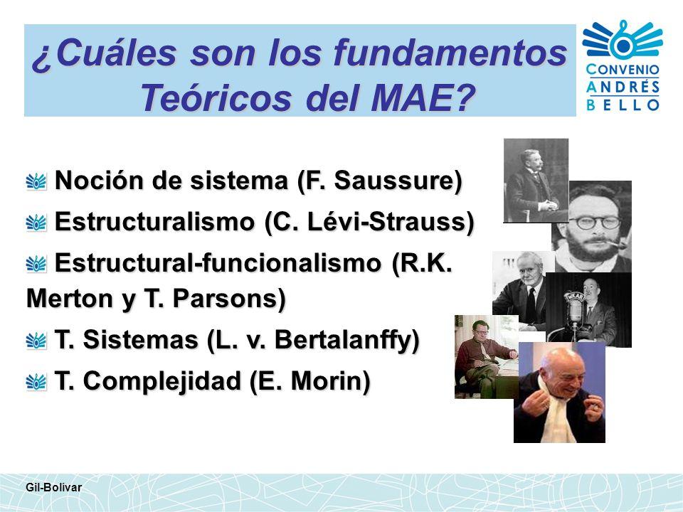 ¿Cuáles son los fundamentos Teóricos del MAE? Noción de sistema (F. Saussure) Noción de sistema (F. Saussure) Estructuralismo (C. Lévi-Strauss) Estruc
