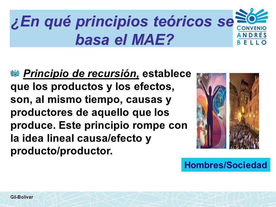 ¿En qué principios teóricos se basa el MAE? Principio de recursión, establece que los productos y los efectos, son, al mismo tiempo, causas y producto