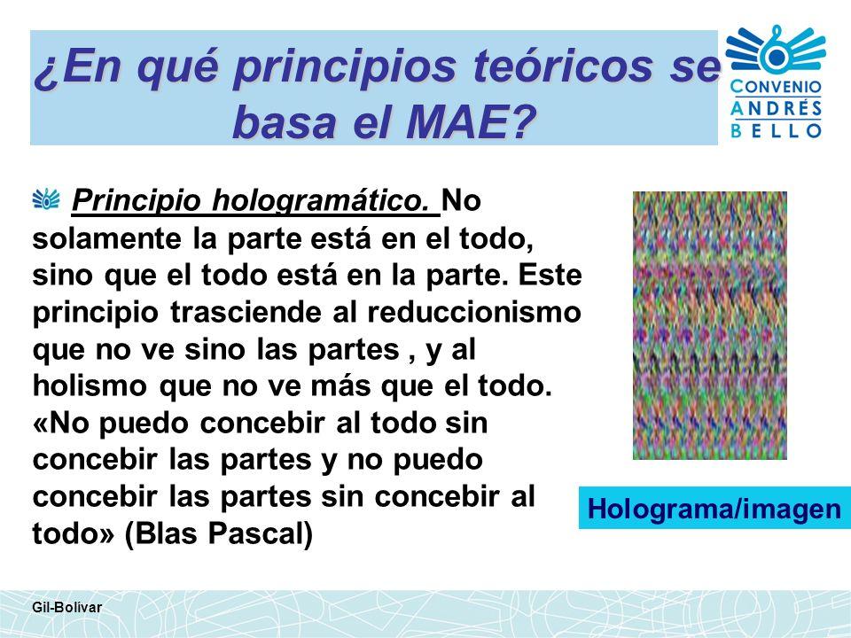 ¿En qué principios teóricos se basa el MAE? Principio hologramático. No solamente la parte está en el todo, sino que el todo está en la parte. Este pr
