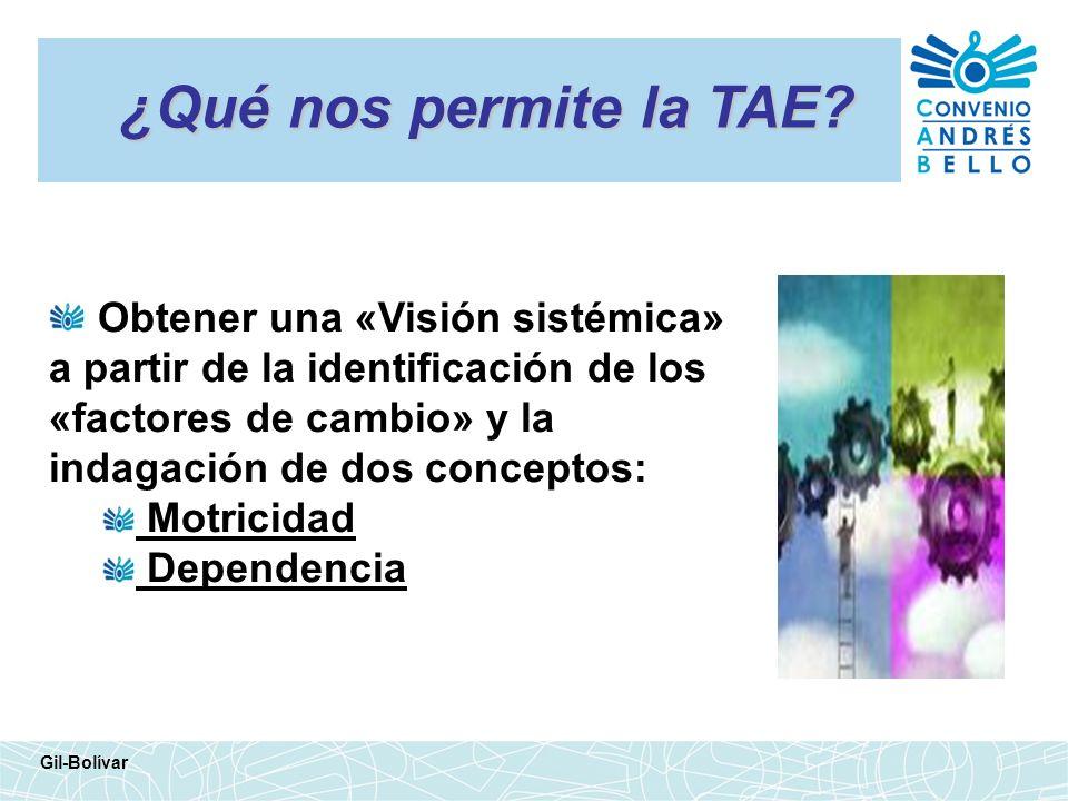 ¿Qué nos permite la TAE? Obtener una «Visión sistémica» a partir de la identificación de los «factores de cambio» y la indagación de dos conceptos: Mo