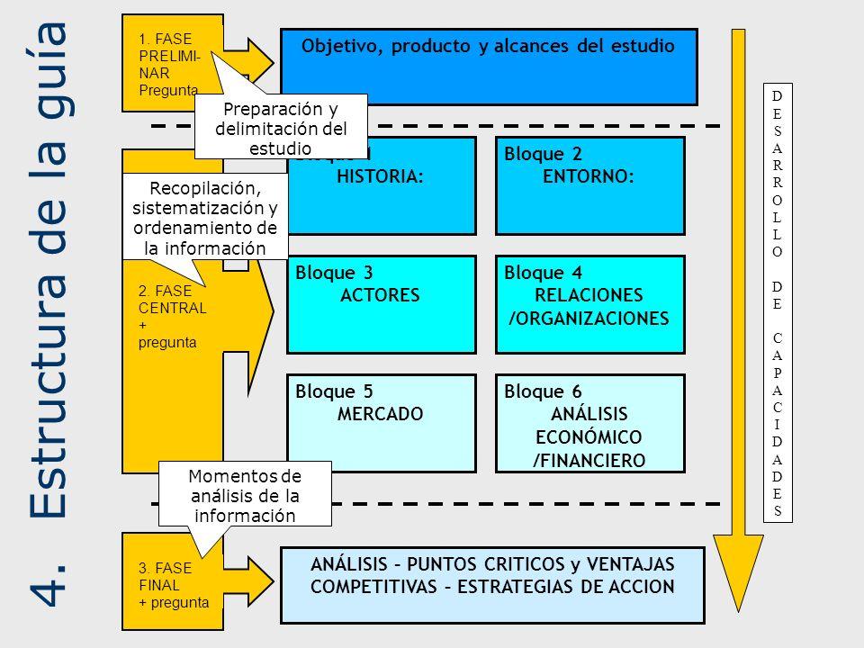 4.Estructura de la guía Bloque 1 HISTORIA: Bloque 2 ENTORNO: Bloque 3 ACTORES Objetivo, producto y alcances del estudio Bloque 5 MERCADO Bloque 4 RELA