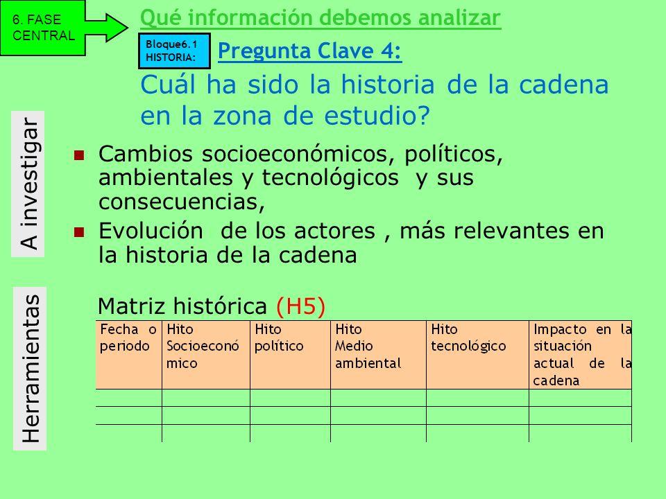 Cuál ha sido la historia de la cadena en la zona de estudio? Cambios socioeconómicos, políticos, ambientales y tecnológicos y sus consecuencias, Evolu