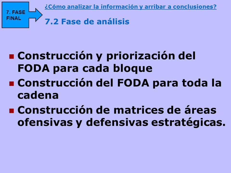 Construcción y priorización del FODA para cada bloque Construcción del FODA para toda la cadena Construcción de matrices de áreas ofensivas y defensiv