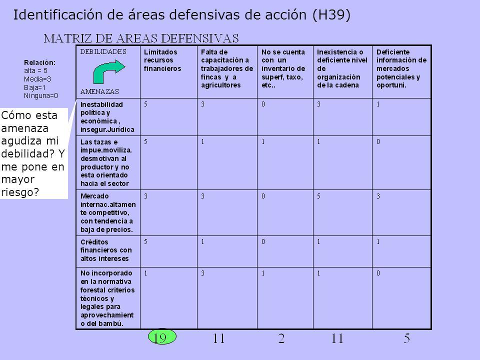 Identificación de áreas defensivas de acción (H39) Cómo esta amenaza agudiza mi debilidad? Y me pone en mayor riesgo?