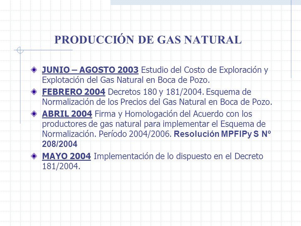 PRODUCCIÓN DE GAS NATURAL JUNIO – AGOSTO 2003 Estudio del Costo de Exploración y Explotación del Gas Natural en Boca de Pozo.