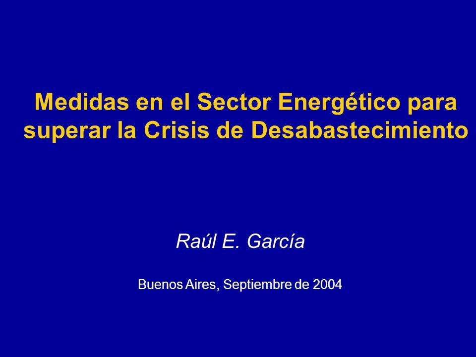 Medidas en el Sector Energético para superar la Crisis de Desabastecimiento Raúl E.