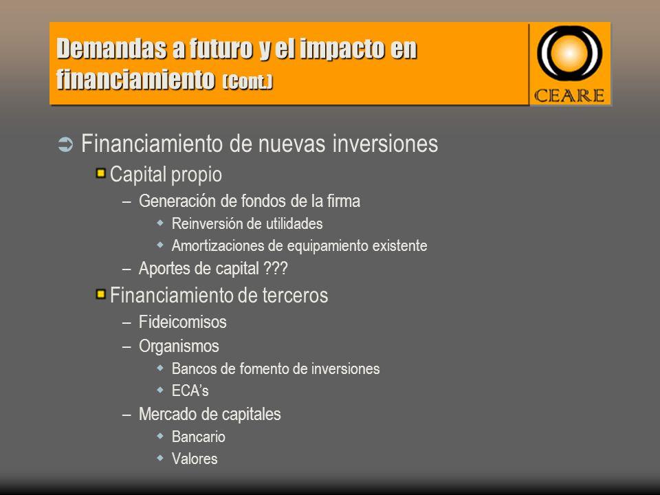 Demandas a futuro y el impacto en financiamiento (Cont.) Financiamiento de nuevas inversiones Capital propio –Generación de fondos de la firma Reinversión de utilidades Amortizaciones de equipamiento existente –Aportes de capital .
