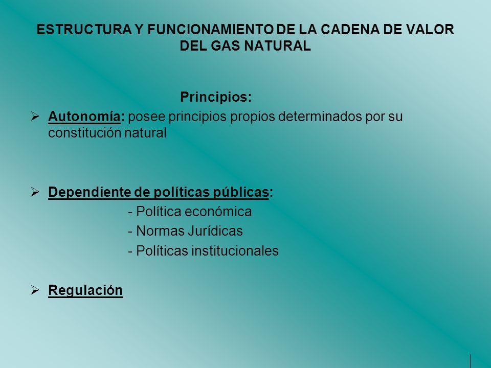 ESTRUCTURA Y FUNCIONAMIENTO DE LA CADENA DE VALOR DEL GAS NATURAL Principios: Autonomía: posee principios propios determinados por su constitución nat