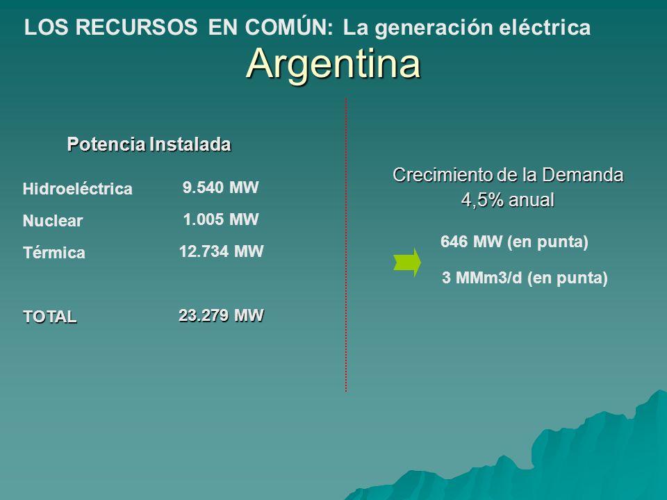Potencia Instalada Crecimiento de la Demanda 4,5% anual Hidroeléctrica Nuclear TérmicaTOTAL 646 MW (en punta) 3 MMm3/d (en punta) 9.540 MW 1.005 MW 12