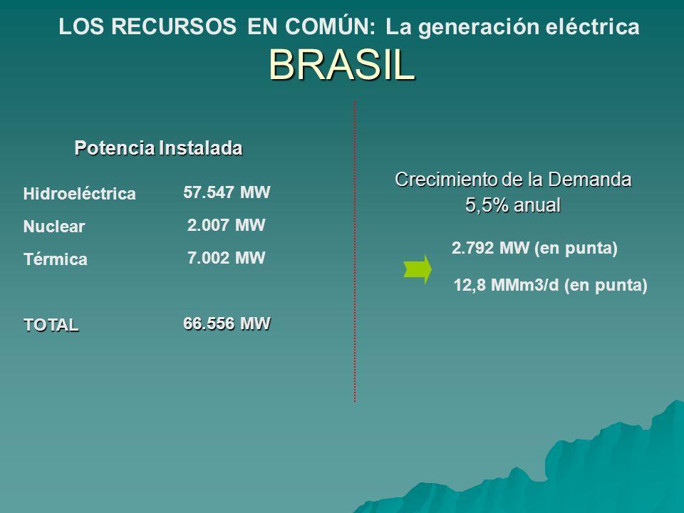 Potencia Instalada Hidroeléctrica Nuclear TérmicaTOTAL 57.547 MW 2.007 MW 7.002 MW 66.556 MW Crecimiento de la Demanda 5,5% anual 2.792 MW (en punta)