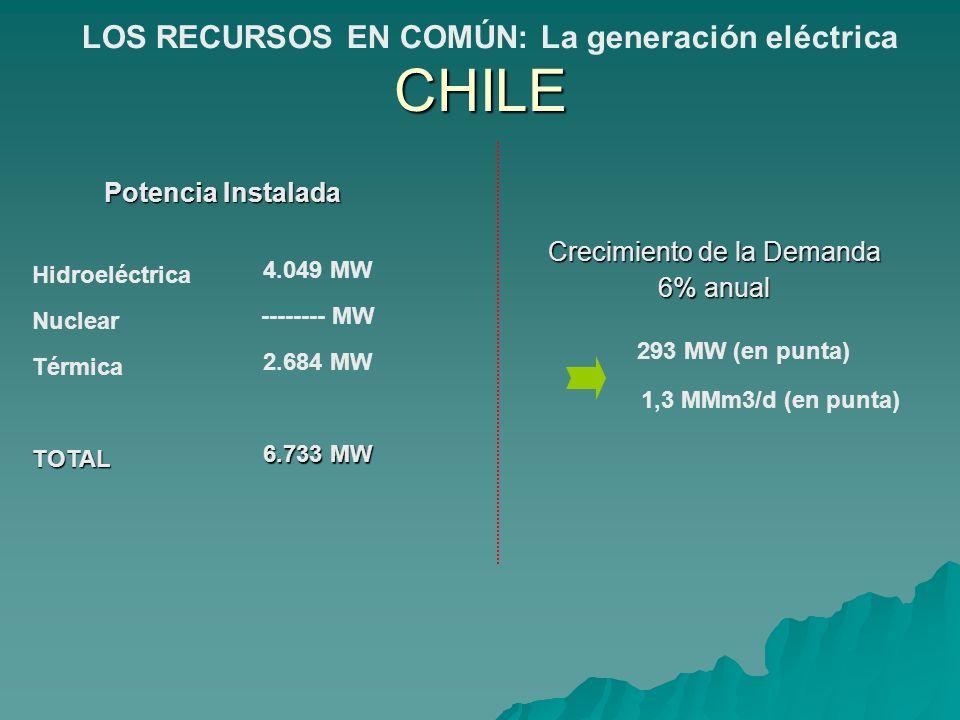 Potencia Instalada Hidroeléctrica Nuclear TérmicaTOTAL 4.049 MW -------- MW 2.684 MW 6.733 MW Crecimiento de la Demanda 6% anual 293 MW (en punta) 1,3