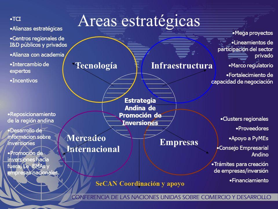 Areas estratégicas Estrategia Andina de Promoción de Inversiones TecnologíaInfraestructura Mercadeo Internacional Empresas TCI Alianzas estratégicas C